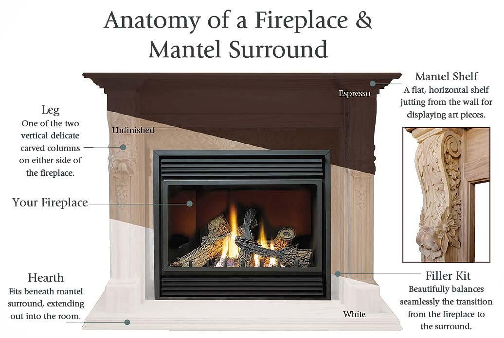 mantel-anatomy